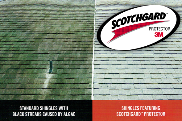 Summer Breeze Roofing Clean Roof Comparison